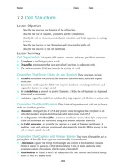 7 2 Cell Structure Worksheet Answers: 7 2 Cell Structure   an organelle that appears as a stack of flattened,