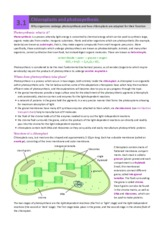 a2-3-1-chloroplasts-and-photosynthesis