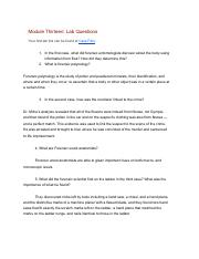 ModuleThirteenLabQuestions.pdf