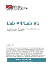 Lab 4 and 5.docx