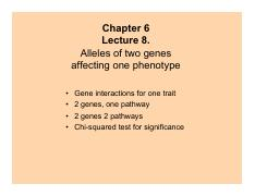 Alleles of Two Genes affecting One Phenotye