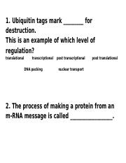 DNA Review Card Questions