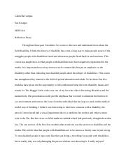 SERP 414 Reflection essay.docx