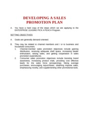 DEVELOPING A SALES PROMOTION PLAN