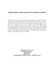 Small_Medium_and_Large_Size_Firm_Valuation_Booklet_2002