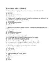Practice quiz1 on Chapter 4.doc
