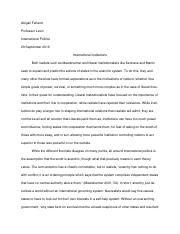 International Institutions Essay