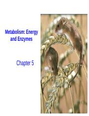 6. Energy and Enzymes (students).pptx