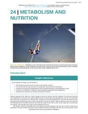 Chapter 24 - Metabolism and Nutrition