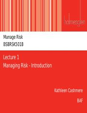 Lecture 1 - Managing Risk - Introduction