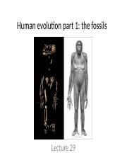Lecture 29. Human evolution part 1 - the Fossils.pptx