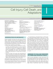 Cell injury, cell death and adaptation