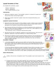 WK 3 lymph formation flow worksheet 2