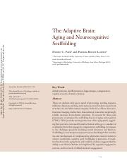 6. The Adaptive Brain_ Aging and Neurocognitive Scaffolding.pdf