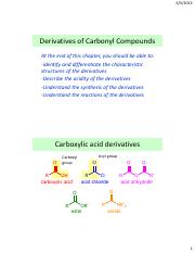 OC_8B_Derivatives of carbonyl compounds_2013_2in1.pdf