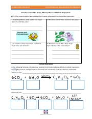 video_recap_comparing_photosynthesis_and_cellular_respiration_by_amoeba_sisters.pdf