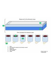 Planting and Reservior Diagrams