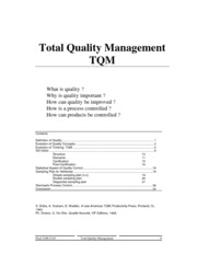 1333569569.7016Total Quality Management 3