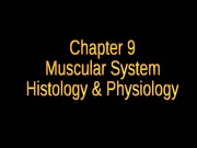 chapter-9-muscular-system