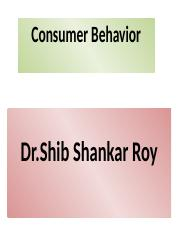 Copy of Consumer Bihavior.4