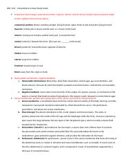 1121 Comprehensive Exam Study Guide endocrine.docx