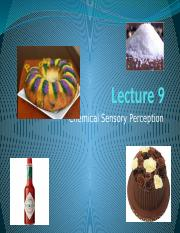 Lecture 9 chemical sensation