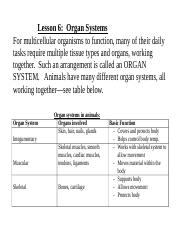 Lesson 6-organ systems