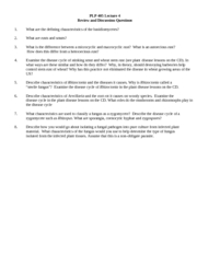 PLP_405_lect_4_questions