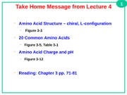 L5_Peptides+and+Peptide+Bonds-v+_2_