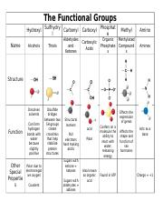 the functional groups chart the functional groups sulfhydry l