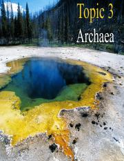 Topic 3 Archaea_for_students.pdf