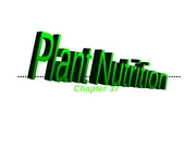 Ch 37- Plant Nutrition-Outline