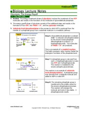 Glycolysis Handout Payoff