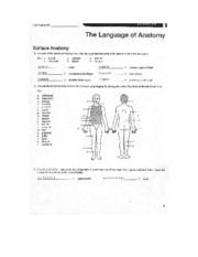 Anatomy Lab Manual Pdf