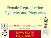 2012-01-30 Pregnancy and Cyclicity