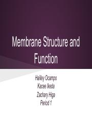 Membrane Structure and Function(1).pdf