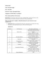 SCIE207_Lab2_worksheet_the one