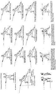 Lunge_Positions