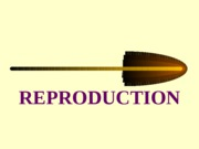 Human Reproduction 2