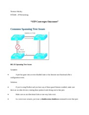 STP Converges Outcomes.docx