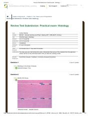 Review Test Submission_ Practical exam- Histology – .