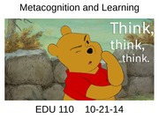 110+Metacognition