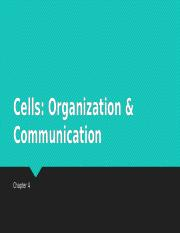 Chapter 4 (Cells- Organization and Communication) with blanks (1)