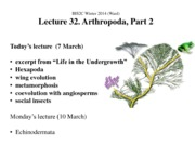 BIS2C Lect32_Ward_Arthropoda 2_ppt