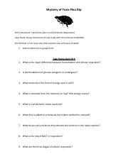 Mystery_of_toxic_Flea_Dip_student_directions_and_take_home_quiz_on_CH9_with_newcast (2)