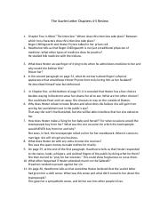 the scarlet letter chapters 4 5 review worksheet the scarlet letter chapters 4 5 review 1. Black Bedroom Furniture Sets. Home Design Ideas