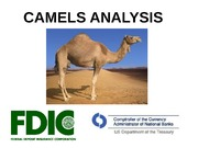 Notes H CAMELS Analysis Revised Aug 21 2014