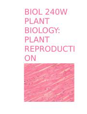 BIOL 240W PLANT RPRODUCTION.docx