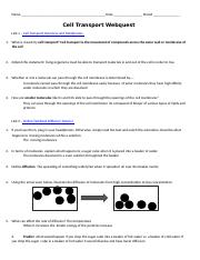 Cell Memne Coloring Worksheet Answer Key Premium Cell Memne further Reinforcement  Cell Transport  KEY  by Biologycorner   TpT also  also  as well Pive and Active Cell Transport Worksheet  Crossword Puzzle by further CELL TRANSPORT WORKSHEET further 11 Transport in Cells S   Transport in Cells How do water molecules also Diffusion  Osmosis and Active Transport Worksheet   TpT together with Cell Transport Worksheet Cellular Transport also Memnes and transport   Biology   Science   Khan Academy in addition  furthermore List And Describe The Types Of Cellular Transport Plasma Memne in addition 20 Ideas Of Cellular Transport Worksheet Answers   Worksheet also 5 7  Cell Transport   Biology LibreTexts furthermore Cell Transport Worksheet  Osmosis  Diffusion  by Amy Brown Science as well . on transport in cells worksheet answers