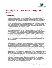 2.2.4._how_much_energy.docx